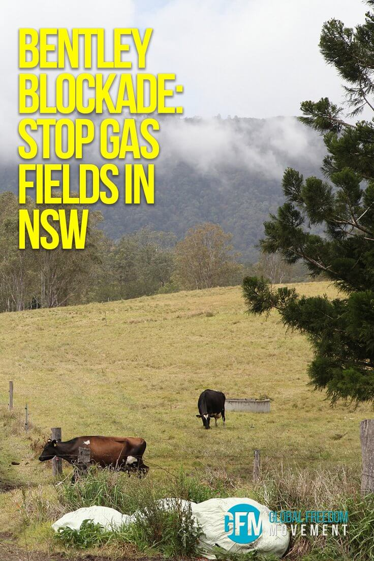 Bentley Blockade: Stop Coal Seam Gas Fields in NSW | Global Freedom Movement