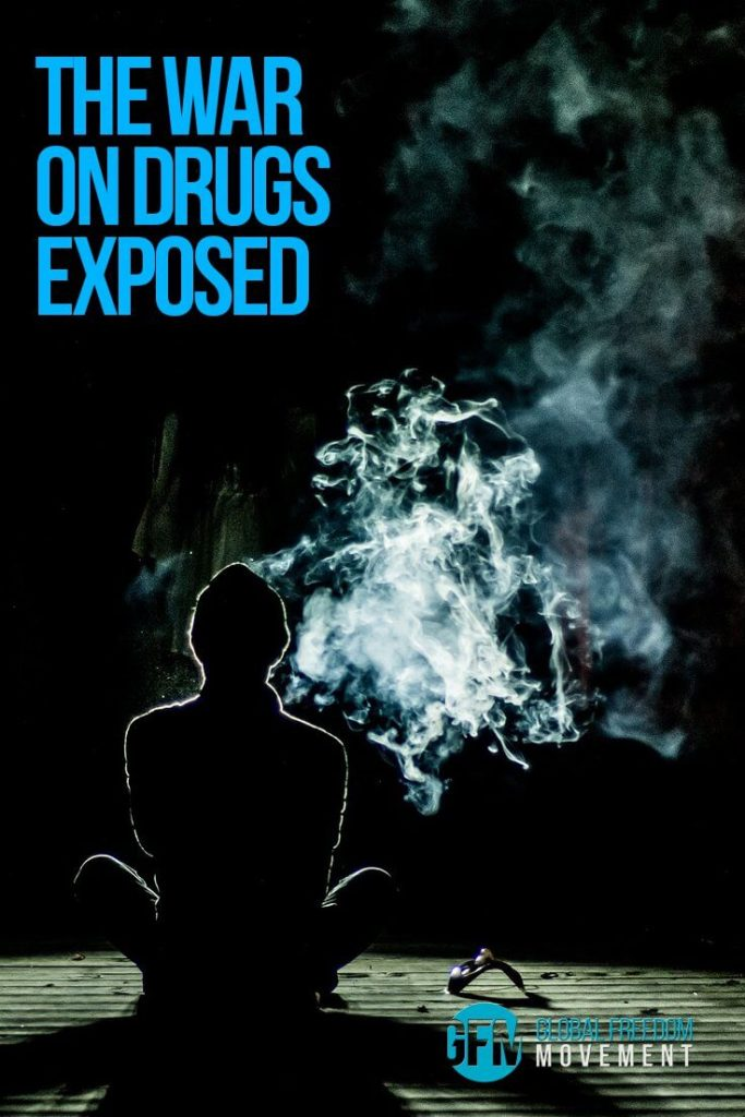 The War on Drugs Exposed by Charles Eisenstein | Global Freedom Movement