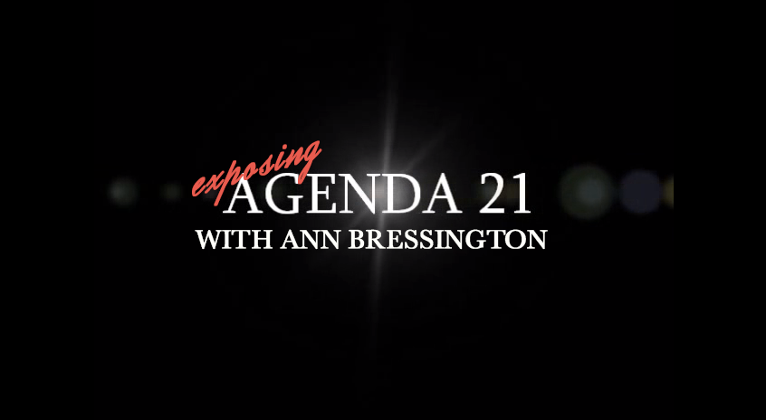 exposing agenda 21 ann bressington global freedom movement radio