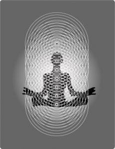 Brendan D Muprhy Junk DNA activation sydney consciousness morphogenetic field bruce lipton sheldrake global freedom movement