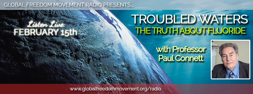 professor paul connett fluoride action network global freedom movement radio interview