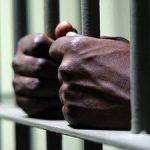 aboriginal deaths in custody global freedom movement