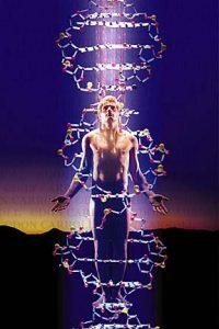 Brendan D. Murphy DNA activation australia