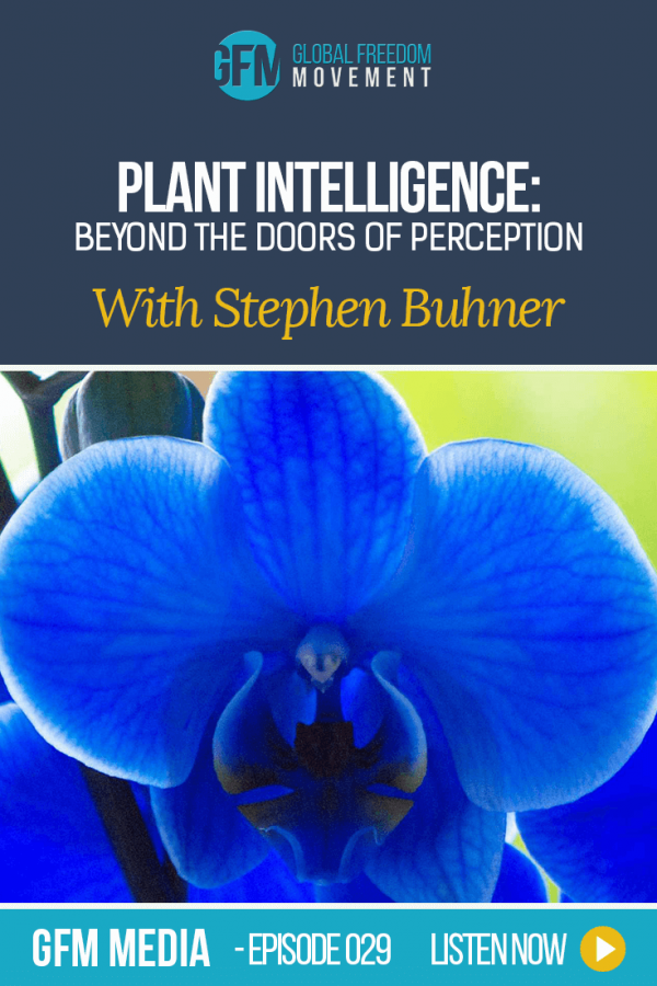Plant Intelligence: Beyond The Doors Of Perception With Stephen Buhner (Episode 29, GFM Radio) | Global Freedom Movement