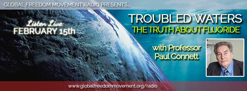 professor paul connett fluoride action network global freedom movement radio interview gfm media