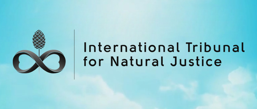 itnj international tribunal for natural justice global freedom movement media aimee devlin brendan d murphy