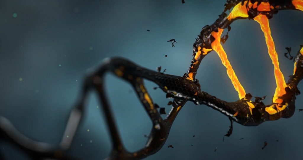 What Happens When You Have A Dna Activation: an inspiring tale | Global Freedom Movement