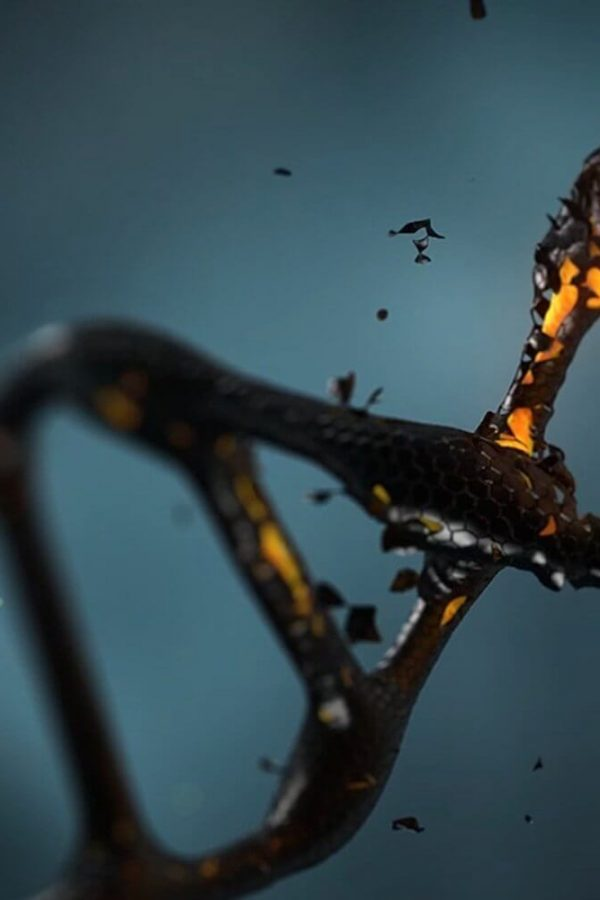 "Incredible and Inspiring DNA Activation Experience as Told by ""T"""