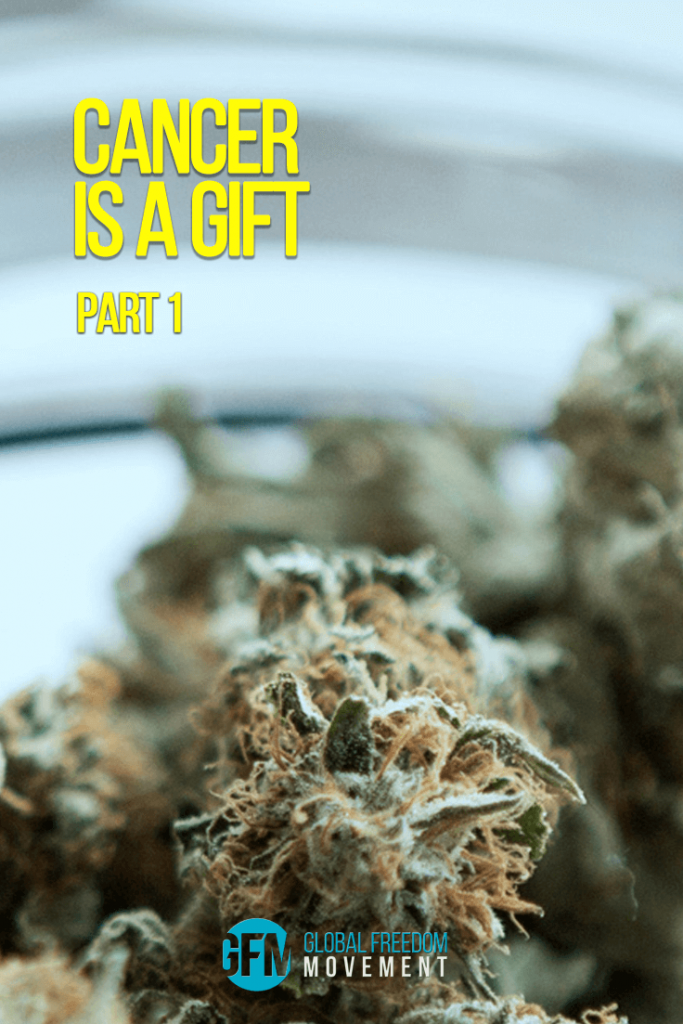 cancer is a gift medicinal cannabis oil
