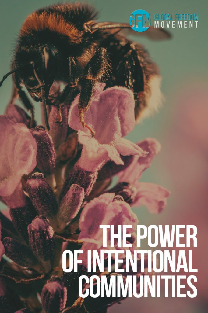 The Power of Intentional Communities - An Exploration of Damanhur by Charles Eisenstein | Global Freedom Movement |