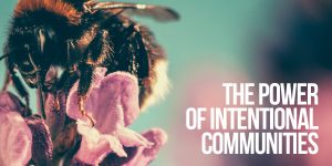 The Power of Intentional Communities