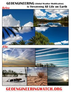 Dane Wigington geoenginering environmental dangers global freedom movement media climate engineering