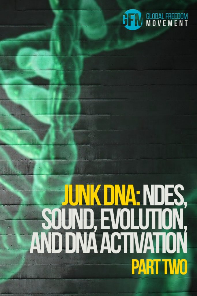 junk dna activation hyperdimensional transformation brendan d murphy