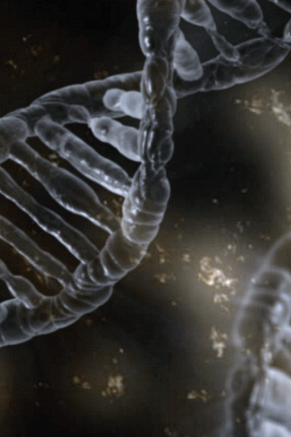 Junk DNA: Your Hyperdimensional Doorway to Transformation (Part 1)
