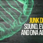 Junk DNA Part 2: NDEs, Sound, Evolution, and DNA Activation