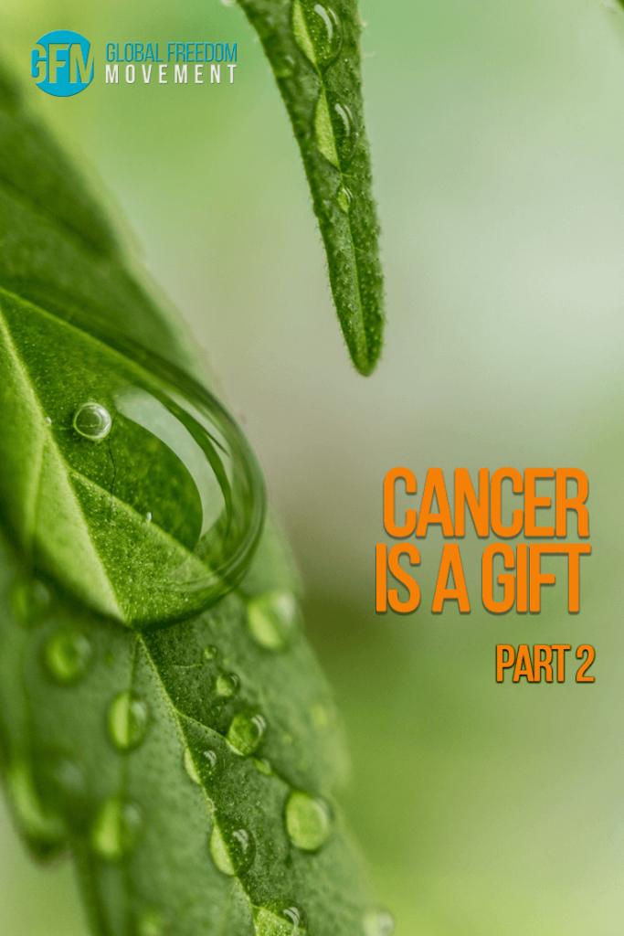 cancer is a gift medicinal cannabis oil liver cancer