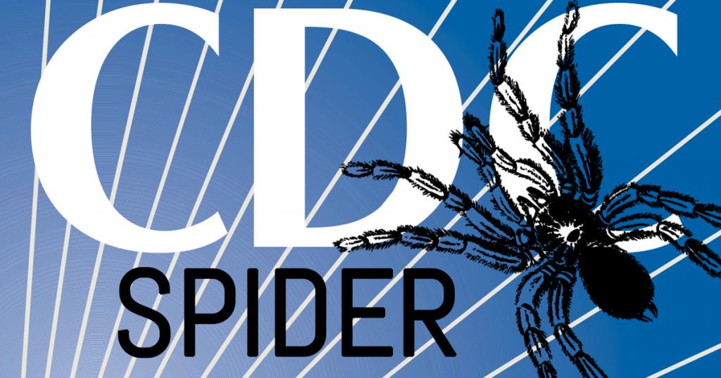 cdc spider