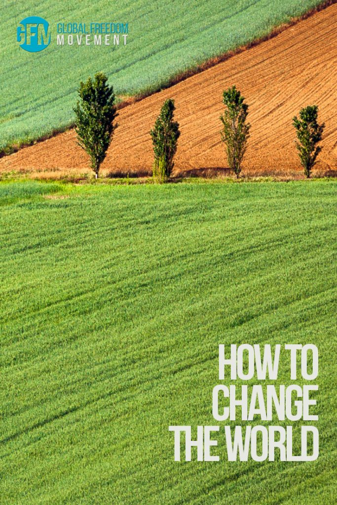 how to change the world global freedom movement aimee devlin
