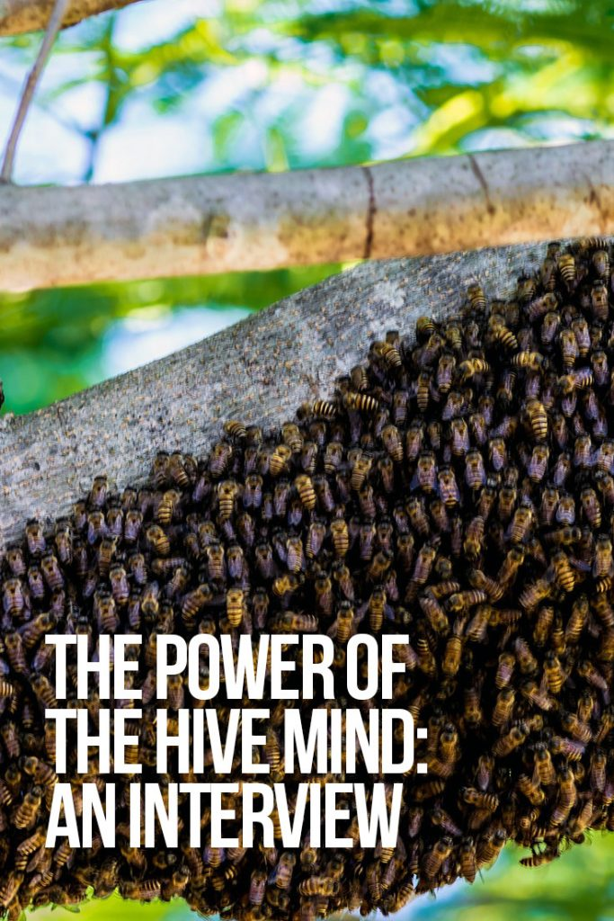 The Power of The Hive Mind: An Interview with Brendan D. Murphy and Aimee Devlin | Global Freedom Movement