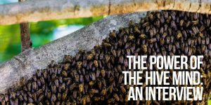 The Power of the Hive Mind and How to Extricate Ourselves from Its Grasp