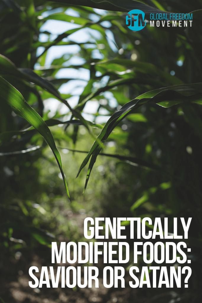 Genetically Modified Foods: Saviour or Satan? | Global Freedom Movement